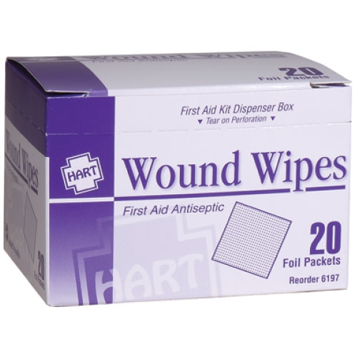 Antiseptic Wipes 20 Pack