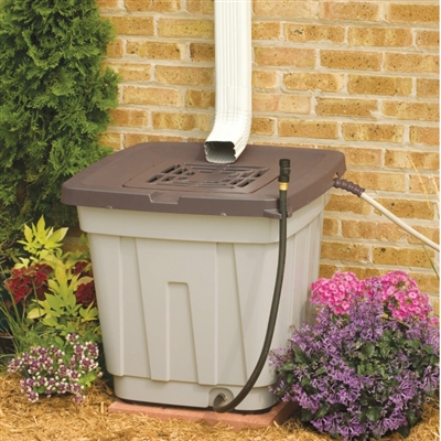 Rain Collection Barrel - 50 Gallons
